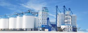 Bulk Cement Storage Silo for Cement Factory