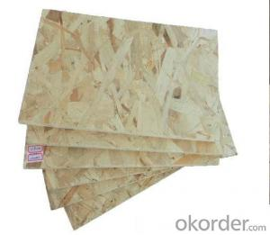 Plain OSB Board Oriented Strend Board for Russia Market