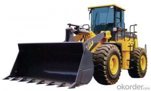 Wheel Loader Engineering Machine XCMG Lw300fn  for Sale