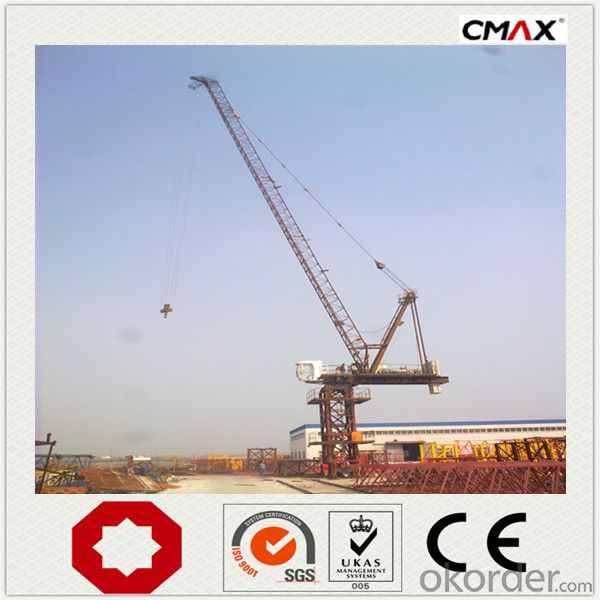 Luffing Tower Crane TCD6029 16T manufacturer
