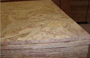OSB3 Board For Builidng Houses and Decoration