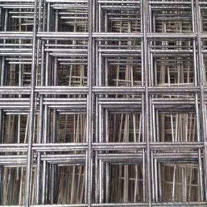 Welded Iron/Stainless Steel Wire Mesh 50X50(manufacturer)