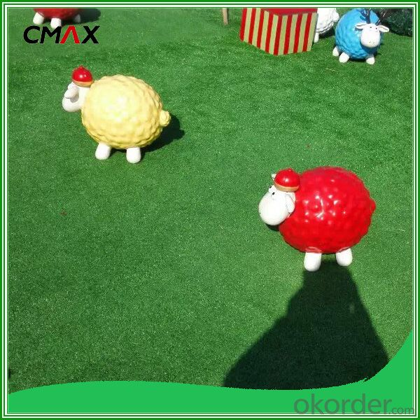 Vetiver Grass Turf Grass CMAX Brand Fortune 500+