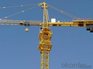 Tower Crane in India Yongli  for Buiding Manufacturer  Hot Sale TC5010