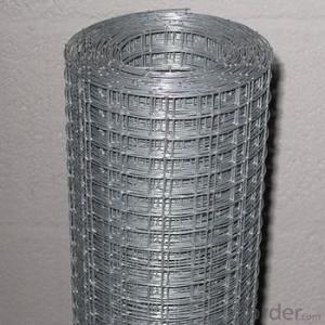 1x1 Galvanized Welded Wire Mesh(manufacturer)