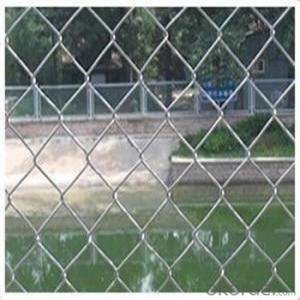 Chain Link Wire Mesh Fence Galvanized Wire Mesh PVC Coated 1