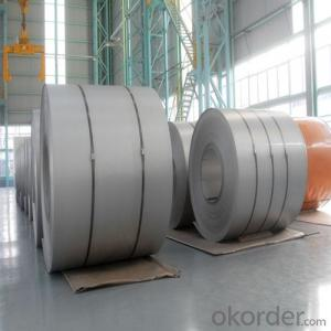 Stainless Steel Coil in Hot Rolled Cold Rolled No.1 0.3mm-4.4mm