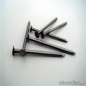 Common Nail Polished or Electro Galvanized Nail Good Quality