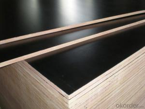Black Shuttering Film Faced Plywood Finger Jointed Core
