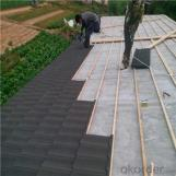 Stone Coated Metal Roofing Tile Hailstone-Resistant High Quality New