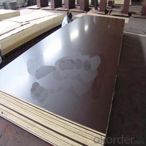 18mm Thickness Waterproof Film Faced Plywood