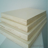 Phenolic Glue Commercial Plywood for 18mm Thickness