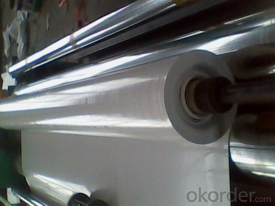 PVC Waterproof Membrane in 1.2mm Thickness