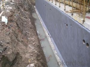 Flex Coat of Cement Based Protective Coating