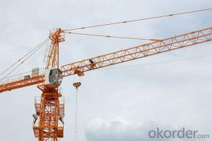 Tower Crane of Chang Li Model Number QTZ31.5 (4075)
