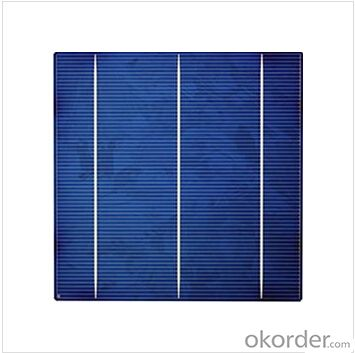 Polycrystalline  Solar Cells Series- 16.0-17.2 -156x156mm ±0.5mm