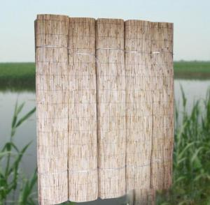 Reed Fence with Good Quality Natural Manufactuer
