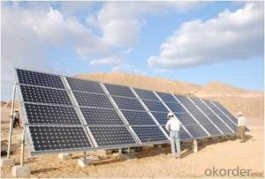 300w Polycrystalline  Solar Panel/ Solar Energy