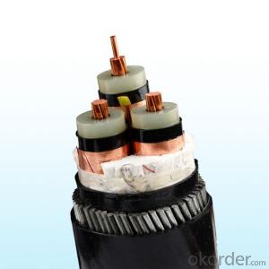XLPE insulated silicone rubber coated electric power cable