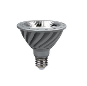 LED PAR  LAMP PAR 30