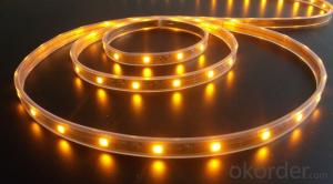 40V 240Leds/Meter 3014 Led Strip Lights