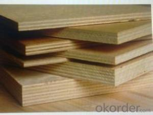 Construction Plywood Film Faced Plywood Plywood for Furniture