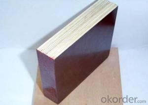 Factory Comercial Plywood Film Faced Plywood