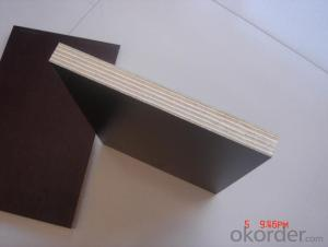 18mm Finger Jointed Black Film Faced Shuttering Plywood for Building Usage