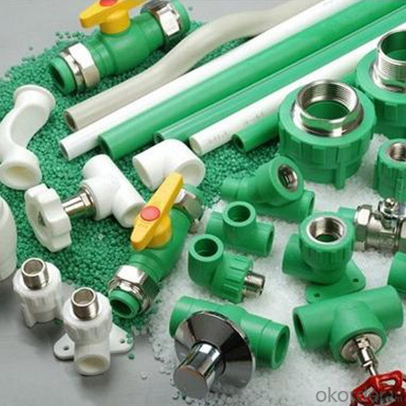 PPR All Plastic Fittings Pipe Plastic Material Thread Plug 1/2