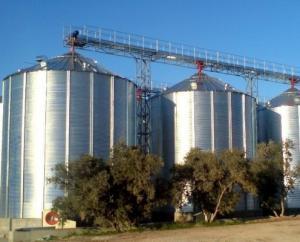 Chicken Feed Storage Steel Silo Supplier