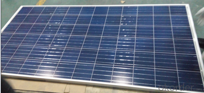 Poly Crystalline Solar Panel  With CNBM Brand