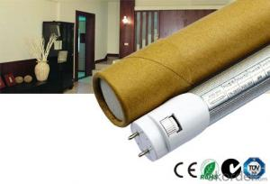Most Economic LED Tube Light
