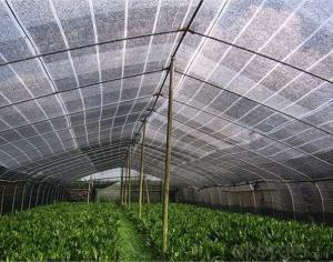 Sun Shade China Factory Supply High Quality Green Shade Cloth