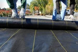 Anti Weed Fabric/Mat Woven Geotextile
