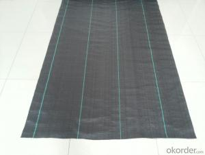 PP Gournd Cover/PP Woven Geotextile/Weed Control Fabric/Horticulture Fabric