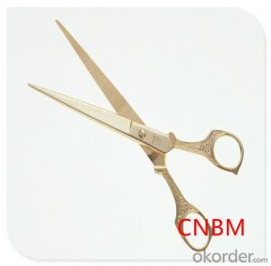 New Design Scissors(OEM/ODM,FDA,LFGB) Made in China