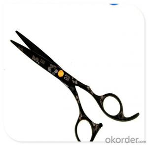 Multi-function Scissors with Good Looking