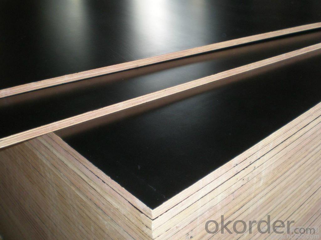 Buy Marine Plywood Waterproof Plywood Film Faced Plywood
