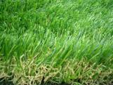 Césped artificial de hilo rizado para jardín residencial y paisajismo.