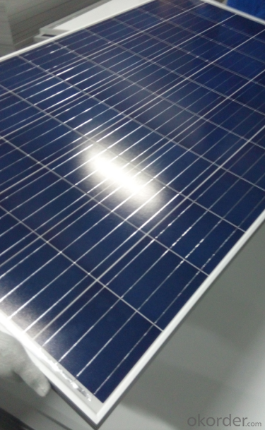 Poly Solar Moudle from 295w to 315w with CNBM Brand