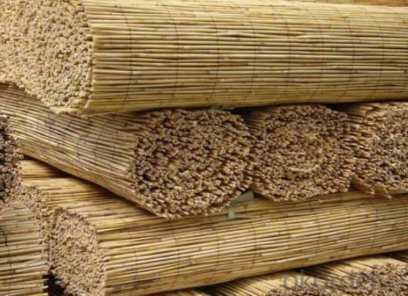 Reed Natural Garden Screening Decoration