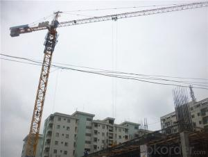 Tower Crane with CE Certificate from China