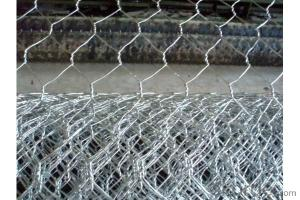 Galvanized Hexagonal Wire Netting-1 1/4 Inch for Chicken and Farm