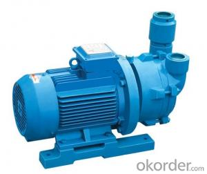SZ Serries Single-stage Water-ring Vacuum Pump