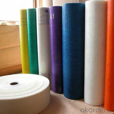 Fiberglass Mesh Cloth 2.5x2.5/5x5 of High Quality