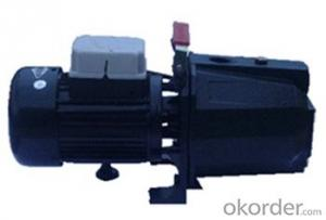 Self-priming Centrifugal Surface Water Pumps