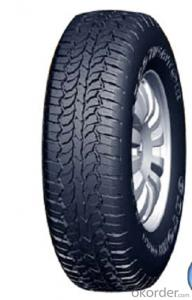 Passager Car Radial Tyre A929 High Speed