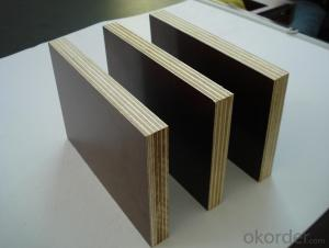 Film Faced Plywood  Shuttering Plywood Construction Plywood 18mm
