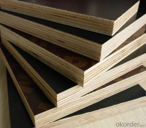Film Faced Plywood  Shuttering Plywood WBP Glue Poplar Core