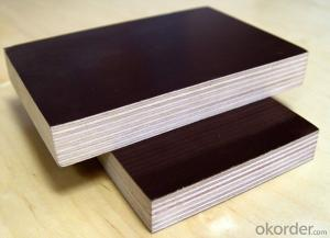 Brown Film Faced Melamine Glue Plywood  Shuttering Plywood